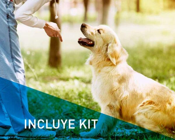 Máster Técnicas de Adiestramiento Canino con Kit inlcuido