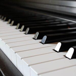 estudiar músicas del mundo