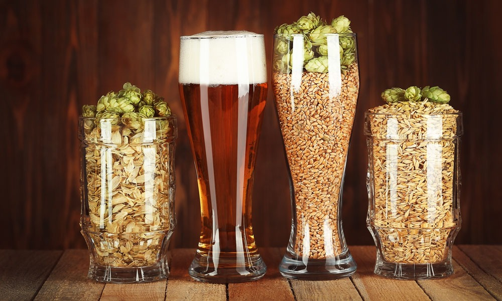 Kit de cerveza casera, ¿qué necesito?