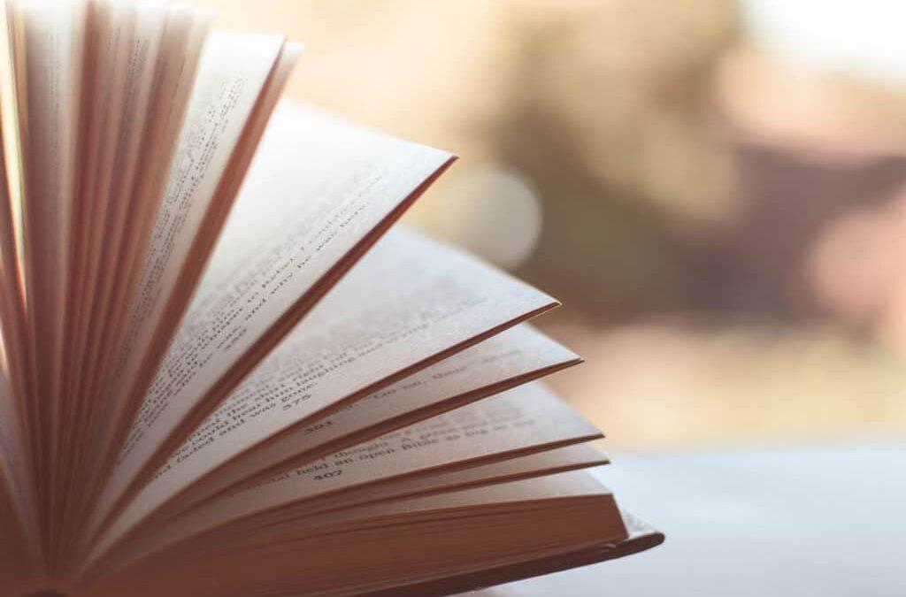 ¿Cuál es el mejor curso para comenzar a escribir?